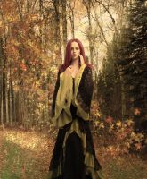 Daughter of the Autumn Dawn by Irse