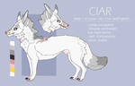 -CIAR- 2018 ref by my-espresso-is-2HOT