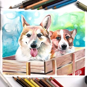 5- Corgis by Lucky978