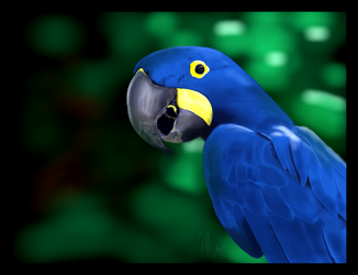 Blue and Yellow make Green by ArtofJefferyHebert