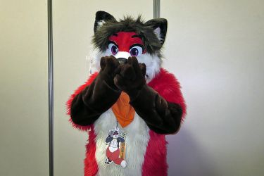 CAPTION THIS!! Uh oh Foxy Os by PudgeyRedFox
