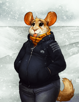 Chinchilly Weather by TasDraws