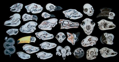 Ceramic Skull Plates by Maquenda