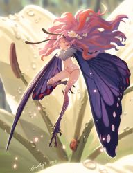 butterfly fairy by Evaty
