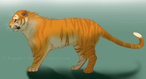 Golden Tiger by Lasania