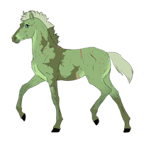 N3217 Padro Foal Design by casinuba