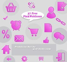 37 Pink Web Icons by PsdDude