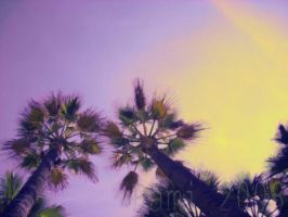Palms by RAMILIVES