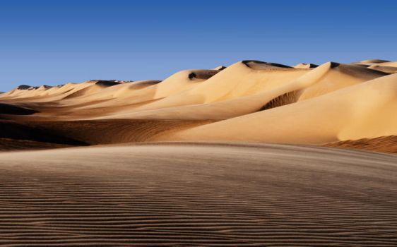Dunes Formation by Hassan9