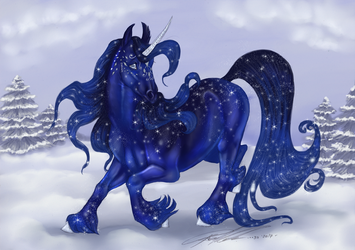 B465 Winterstern by moonfeather