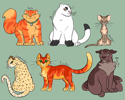 look at them battle cats by ZooExorcist