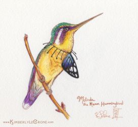 Melinda the Mean Hummingbird by Dreamspirit