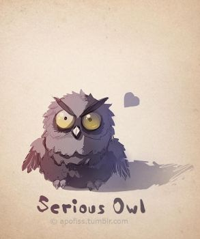 serious owl by humphreycat