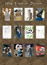 Year in Review 2016 by Tigershark06