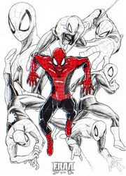 Wallcrawler by FrancoTieppo
