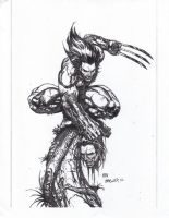 wolverine new style inks 1 by UltimateInker