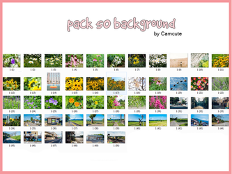 [210617] : PACK 50 BG by camcute