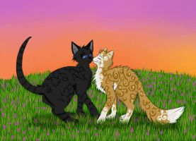Cats-Warriors: Crowfeather x Leafpool by Lunatic-Mo-on