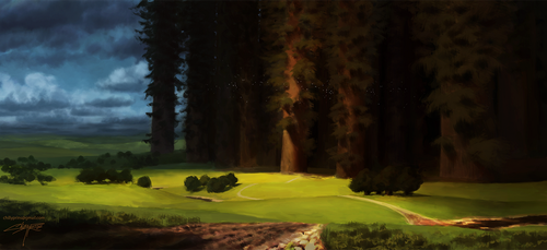 Black Forest by Chillay