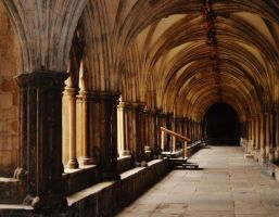 Norwich Cathedral by Emily18495