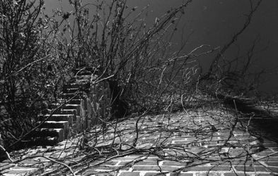 stairway to nowhere by defacedlawngnome