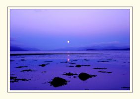 Tranquility in Mauve by ArwensGrace