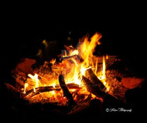 Campfire by Tashee-Photography