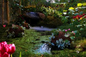 Fairy Pool Stock by blaisedrew62