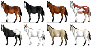 CLOSED Horse Adopts by lionsilverwolf