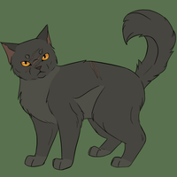 Yellowfang by Nachtblatt