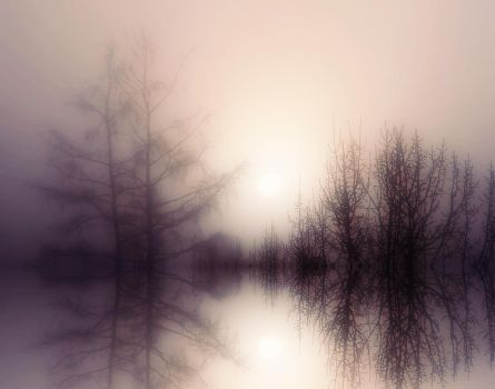 Fog Lake by BBs-Brushes