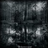 La mare aux fees V by CountessBloody
