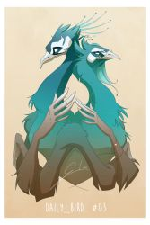 Daily_Bird Challenge #03 by GiorgiaLanza