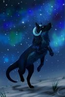 Ych :Chasing after he northern lights by Neawana