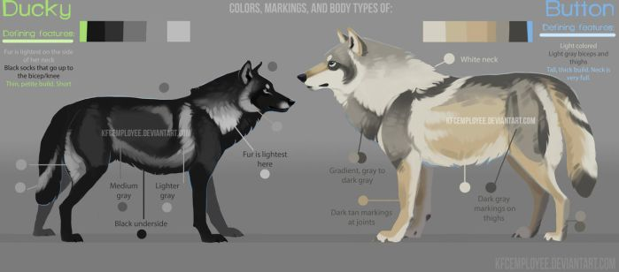 Button and Ducky's colors and markings guide (Ref) by Chickenbusiness