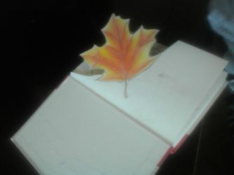Book Art page #1: Not a Leaf, Page One by MangaPhilosopher