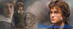 Harry Banner by EverythingMagic