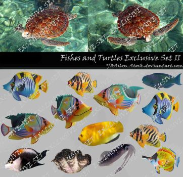 Fishes and Turtles Exclusive Set II by YBsilon-Stock