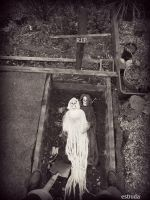 Is This The End Of Mr And Mrs Reaper by Estruda