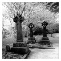 Grave yard by nibbler-photo