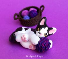 Black and White kitty playing with yarn by SculptedPups