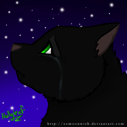 Hollyleaf by TheMoonfall