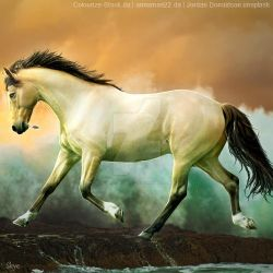 HEE || Horse Avatar | Jellos Silver Spoons by skystream11