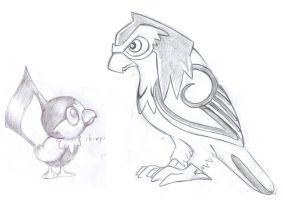 Chatot's pre-evo and evo by kaseddy