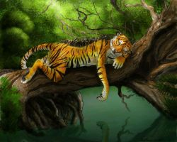 Resting Tiger +color+ by Aunumwolf42