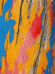 Colorful Texture 24827119 by StockProject1