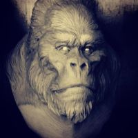 SilverBack by Pedro-Moretto