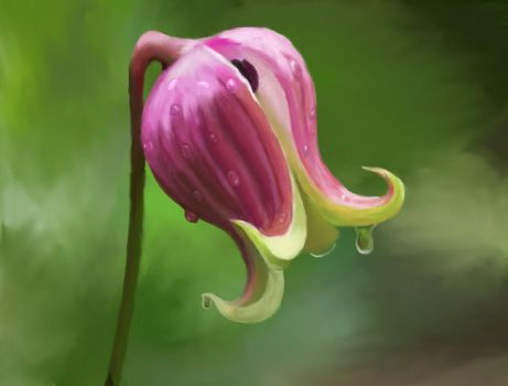 First painted flower by OMGHereIAm