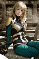 Black Canary - New 52 - Birds of Prey by FioreSofen