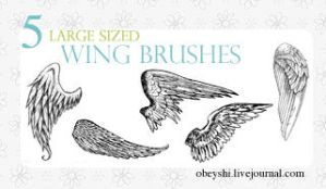 Large Wing Brushes by Obeyshi